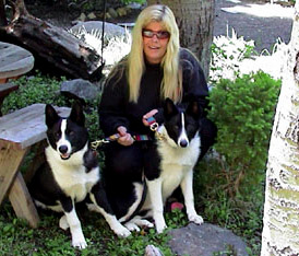 Ann and Karelian bear dogs
