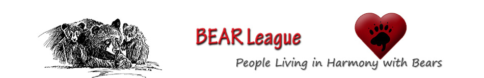 BEAR League header